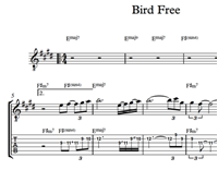 Снимка на Bird Free - Sheet Music & Tabs
